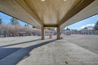Photo 48: 201 2425 90 Avenue SW in Calgary: Palliser Apartment for sale : MLS®# A1052664