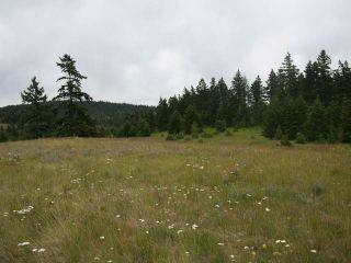 Photo 15: 1328 AC SCOTT ROAD in : Valleyview Lots/Acreage for sale (Kamloops)  : MLS®# 135387