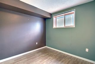 Photo 34: 16044 38 street NW in Edmonton: Zone 03 House for sale : MLS®# E4248402