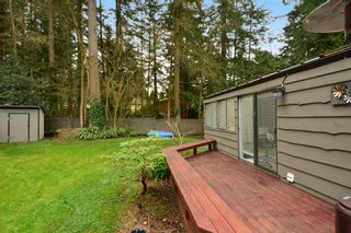 """Photo 40: 2624 140 Street in Surrey: Sunnyside Park Surrey House for sale in """"Elgin / Chantrell"""" (South Surrey White Rock)  : MLS®# F1435238"""