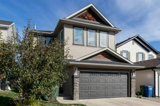 Photo 30: 327 Sagewood Landing SW: Airdrie Detached for sale : MLS®# A1149065
