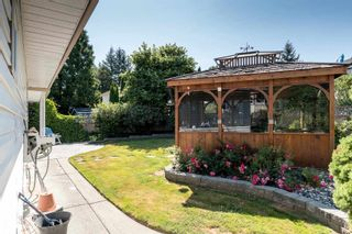 Photo 32: 22970 126 Avenue in Maple Ridge: East Central House for sale : MLS®# R2604751