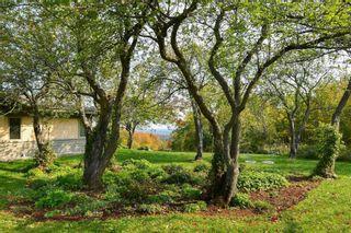 Photo 7: 798475 3rd Line in Mulmur: Rural Mulmur House (Bungalow) for sale : MLS®# X4806669