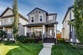 Main Photo: 64 Copperstone Gardens SE in Calgary: Copperfield Detached for sale : MLS®# A1145185