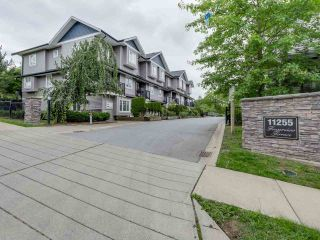 """Main Photo: 10 11255 132 Street in Surrey: Bridgeview Townhouse for sale in """"FRASERVIEW TERRACE"""" (North Surrey)  : MLS®# R2086692"""
