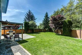 Photo 19: 22892 GILLIS Place in Maple Ridge: East Central House for sale : MLS®# R2060019