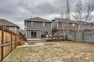Photo 21: 180 BRIDLEPOST Green SW in Calgary: Bridlewood House for sale : MLS®# C4181194