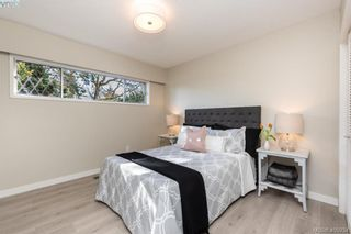 Photo 19: 1116 Nicholson St in VICTORIA: SE Lake Hill House for sale (Saanich East)  : MLS®# 806715