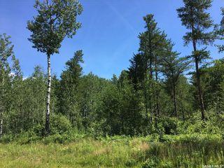 Photo 8: Prime Acreage Lot 4 Block U in Nipawin: Lot/Land for sale (Nipawin Rm No. 487)  : MLS®# SK868110