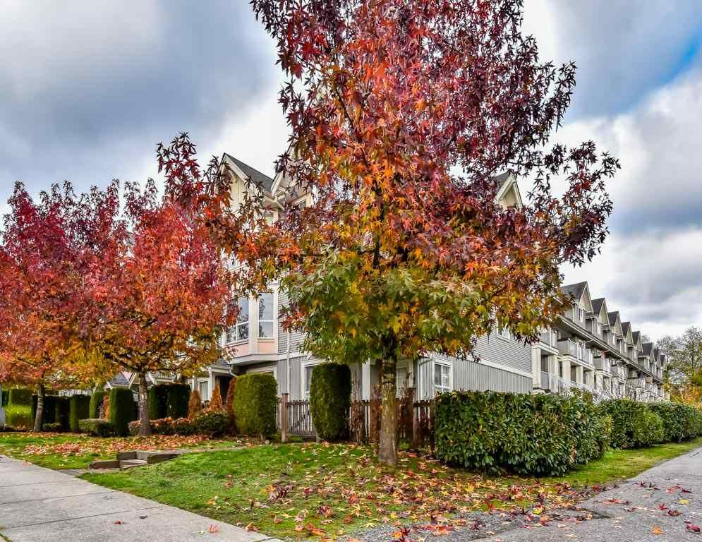 """Main Photo: 39 7370 STRIDE Avenue in Burnaby: Edmonds BE Townhouse for sale in """"MAPLEWOOD TERRACE"""" (Burnaby East)  : MLS®# R2222185"""