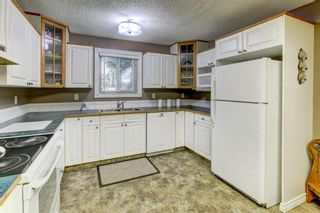 Photo 5: 184 Mountain Circle SE: Airdrie Detached for sale : MLS®# A1137347