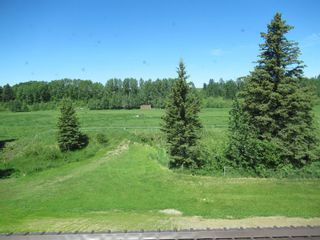 Photo 31: 391043 Range Road 5-0 Road: Condor Agriculture for sale : MLS®# A1122824