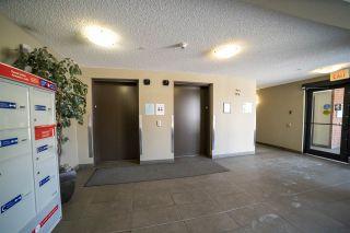 Photo 38: 202 13907 136 Street in Edmonton: Zone 27 Condo for sale : MLS®# E4226852