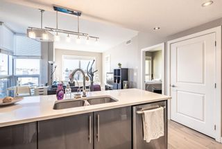Photo 7: 303 1110 3 Avenue NW in Calgary: Hillhurst Apartment for sale : MLS®# A1060086