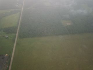 Photo 8: RR74 Twp 514: Rural Parkland County Rural Land/Vacant Lot for sale : MLS®# E4183439