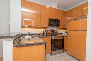 Photo 11: 103 2028 W 11TH AVENUE in Vancouver: Kitsilano Condo for sale (Vancouver West)  : MLS®# R2601184