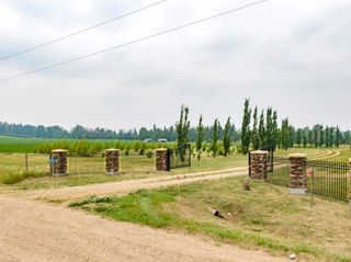 Photo 8: 50362 RR 281: Rural Leduc County Rural Land/Vacant Lot for sale : MLS®# E4255480