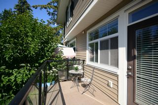 Photo 19: 44 14377 60 AVENUE in Surrey: Sullivan Station Townhouse for sale ()  : MLS®# R2099824
