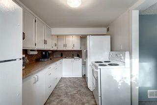 Photo 30: 855 13 Avenue NE in Calgary: Renfrew Detached for sale : MLS®# A1064139