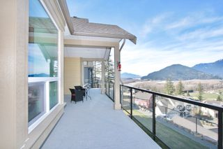 Photo 53: 1487 Stromdahl Place in Agassiz: Mt Woodside House for sale : MLS®# R2550995
