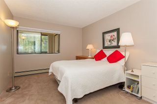 "Photo 14: 304 1526 GEORGE Street: White Rock Condo for sale in ""SIR PHILIP"" (South Surrey White Rock)  : MLS®# R2208619"