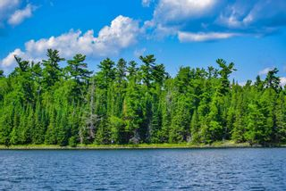 Photo 8: lot 2 Five Point Island in South of Kenora: Vacant Land for sale : MLS®# TB212084