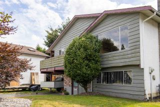 Photo 32: 21022 119 Avenue in Maple Ridge: Southwest Maple Ridge House for sale : MLS®# R2482624
