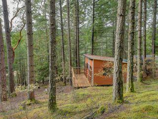 Photo 36: 119 Ross-Durrance Rd in : Hi Eastern Highlands House for sale (Highlands)  : MLS®# 887930