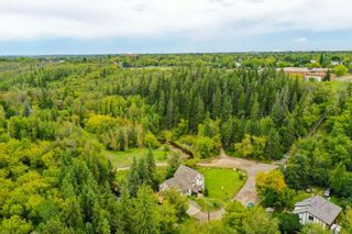 Photo 9: 9644 88 Avenue in Edmonton: Zone 15 House for sale : MLS®# E4187777