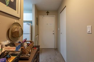 Photo 21: 213 585 Dogwood St in : CR Campbell River Central Condo for sale (Campbell River)  : MLS®# 876595
