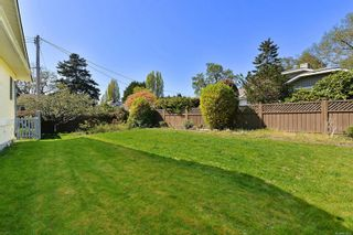 Photo 27: 3301 Argyle Pl in : SE Camosun House for sale (Saanich East)  : MLS®# 873581