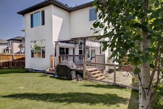 Photo 37: 40 BRIGHTONCREST Manor SE in Calgary: New Brighton Detached for sale : MLS®# A1016747