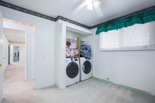 Photo 31: 3307 39 Street SE in Calgary: Dover Detached for sale : MLS®# A1148179