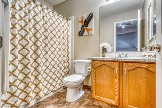 Photo 22: 686 Coventry Drive NE in Calgary: Coventry Hills Detached for sale : MLS®# A1116963