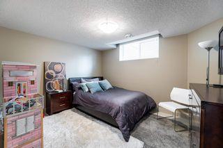 Photo 28: 3314 WATSON Bay in Edmonton: Zone 56 House for sale : MLS®# E4252004