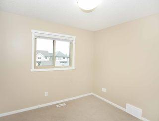 Photo 27: 4110 ALLAN Crescent in Edmonton: Zone 56 House for sale : MLS®# E4249253