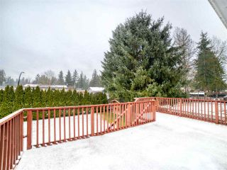 Photo 5: 20073 42 Avenue in Langley: Brookswood Langley House for sale : MLS®# R2538938