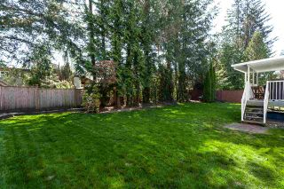 Photo 20: 33328 LYNN Avenue in Abbotsford: Central Abbotsford House for sale : MLS®# R2365885