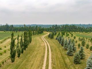 Photo 9: 50362 RR 281: Rural Leduc County Rural Land/Vacant Lot for sale : MLS®# E4255480
