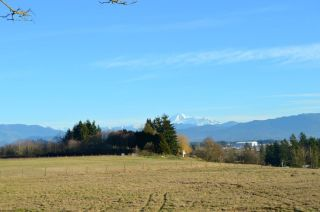 Photo 1: 30169 MARSHALL ROAD in Abbotsford: Abbotsford West Land for sale : MLS®# R2000064