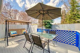 Photo 31: 11 Calandar Road NW in Calgary: Collingwood Detached for sale : MLS®# A1091060