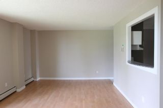 Photo 5: 201 3518 44 Street SW in Calgary: Glenbrook Apartment for sale : MLS®# A1119375