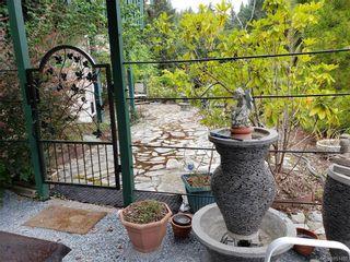 Photo 46: 6224 Llanilar Rd in : Sk East Sooke House for sale (Sooke)  : MLS®# 851492
