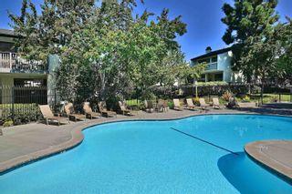 Photo 35: LA JOLLA Condo for sale : 2 bedrooms : 8440 Via Sonoma #76