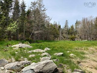 Photo 22: Lot Mushaboom Road in Mushaboom: 35-Halifax County East Vacant Land for sale (Halifax-Dartmouth)  : MLS®# 202114485