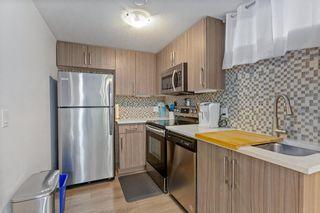 Photo 17: 6528/6528B 23 Avenue NE in Calgary: Pineridge Detached for sale : MLS®# A1033640