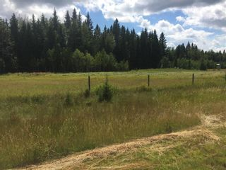 Photo 1: 111 Township Road 325A: Rural Mountain View County Land for sale : MLS®# A1058359
