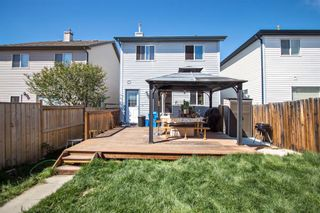 Photo 25: 24 Covepark Road NE in Calgary: Coventry Hills Detached for sale : MLS®# A1109652