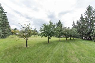 Photo 24: 18951 121 Avenue in Edmonton: Zone 40 House for sale : MLS®# E4239592