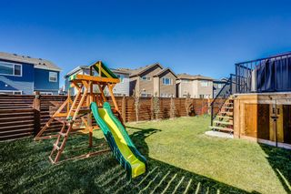 Photo 29: 29 Howse Terrace NE in Calgary: Livingston Detached for sale : MLS®# A1150423
